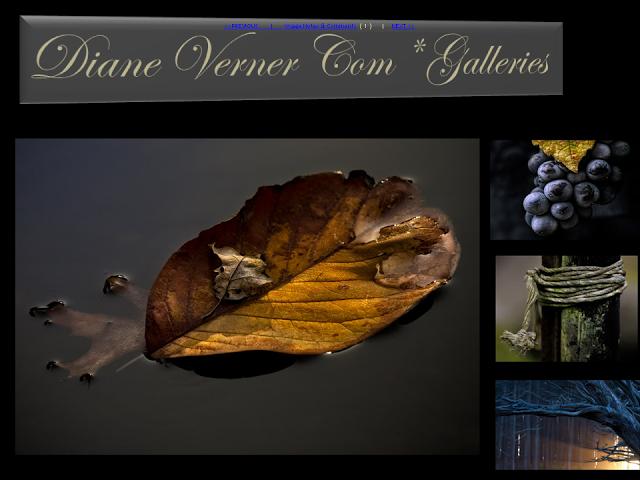 Diane Verner Com1.png